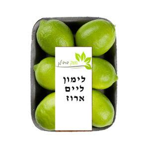 לימון ליים ארוז 1.3 ק״ג